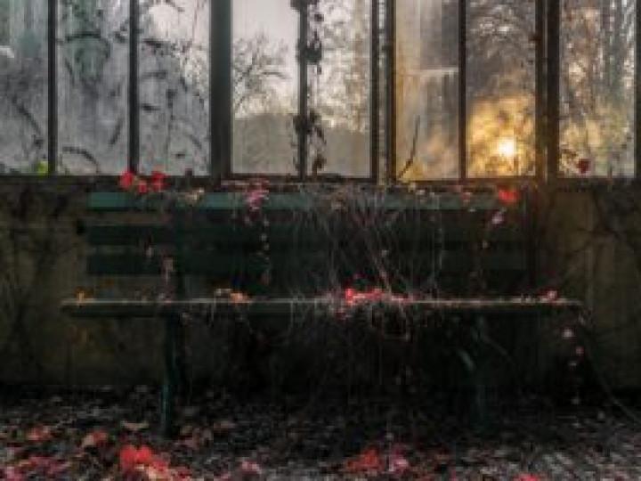 Pluquet Nicolas Souvenir d'automne