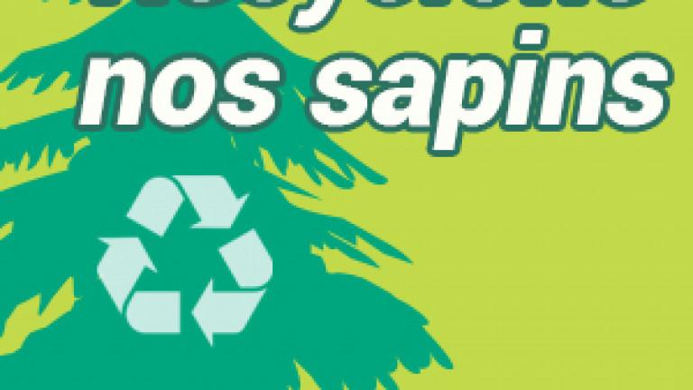 recyclons-sapins